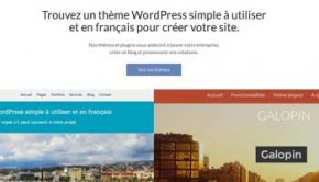 themes de france wordpress