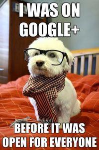 astuce pour google plus